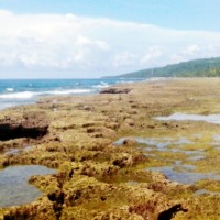 """Rockpool"" di pesisir Airlouw, Pulau Ambon"